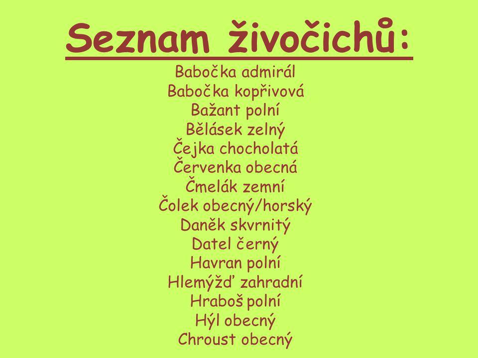 Seznam živočichů: Babočka admirál Babočka kopřivová Bažant polní