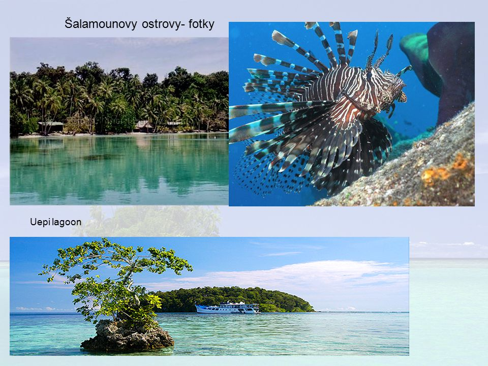Šalamounovy ostrovy- fotky
