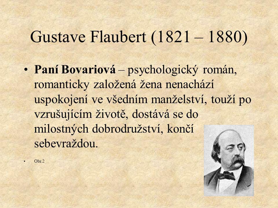 Gustave Flaubert (1821 – 1880)