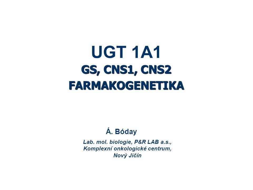 UGT 1A1 GS, CNS1, CNS2 FARMAKOGENETIKA Á. Bóday