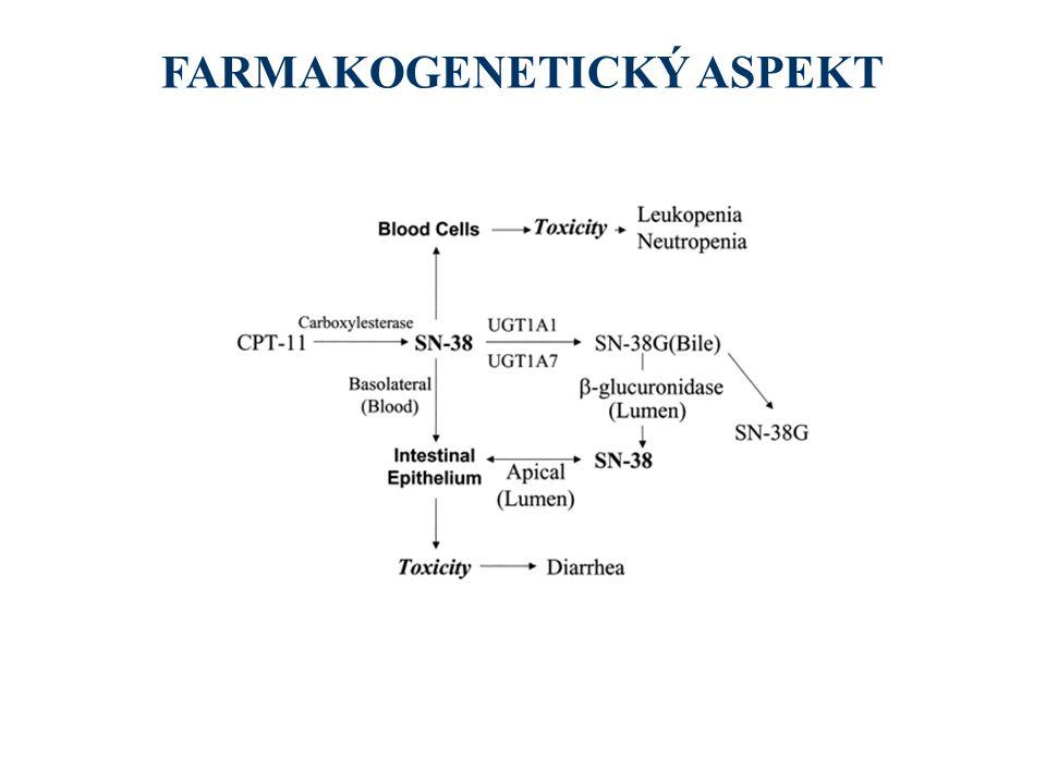 FARMAKOGENETICKÝ ASPEKT