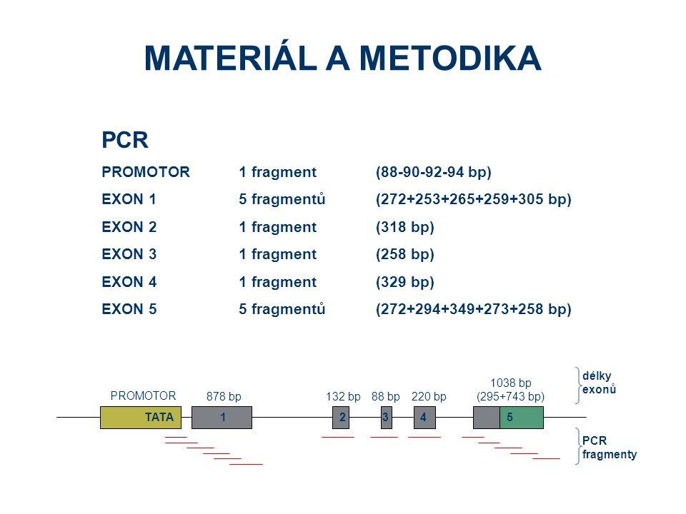 MATERIÁL A METODIKA PCR PROMOTOR 1 fragment (88-90-92-94 bp)