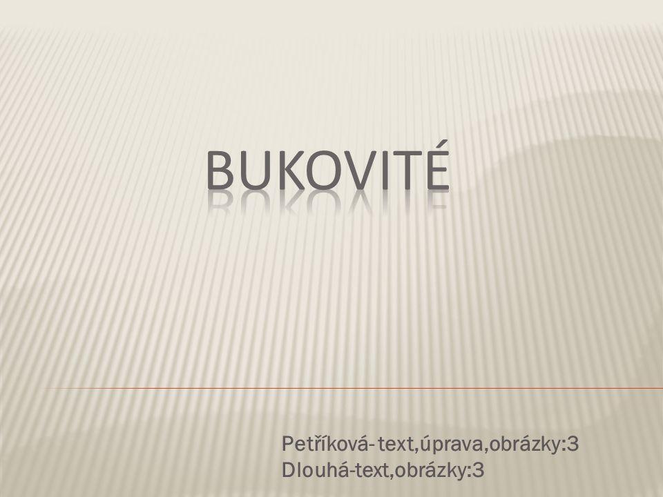 Petříková- text,úprava,obrázky:3 Dlouhá-text,obrázky:3
