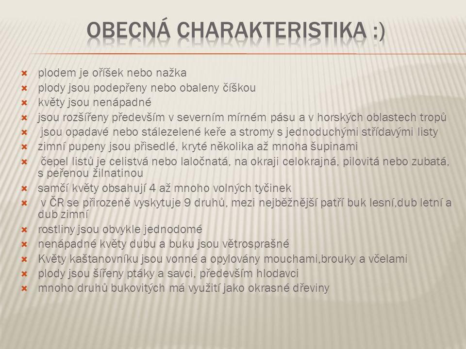 Obecná charakteristika :)