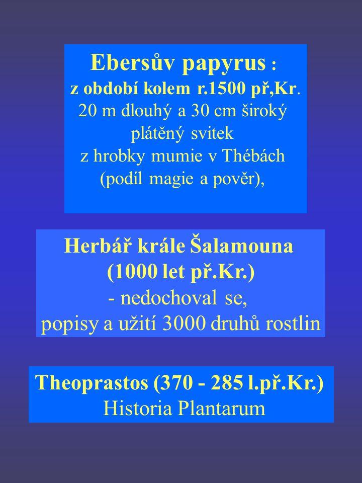 Herbář krále Šalamouna