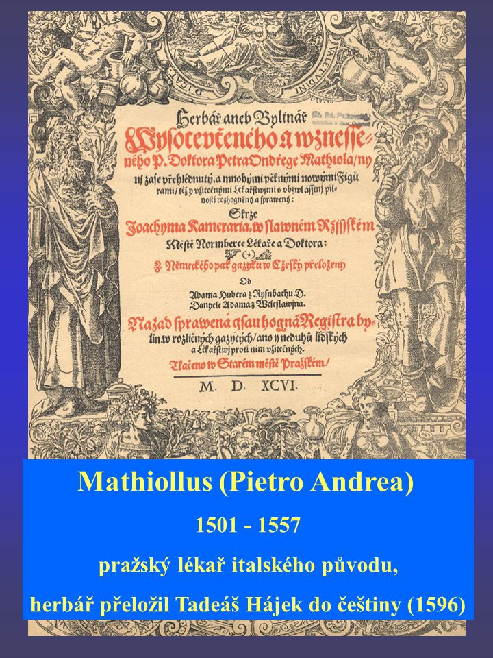 Mathiollus (Pietro Andrea)