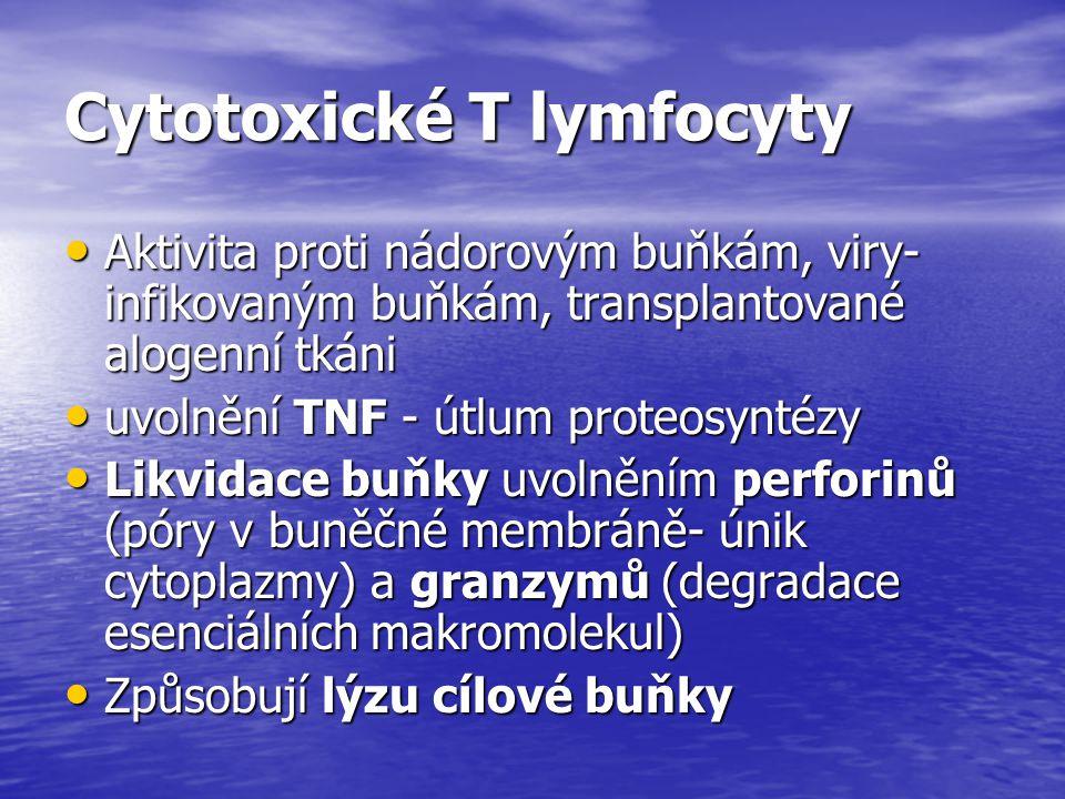 Cytotoxické T lymfocyty