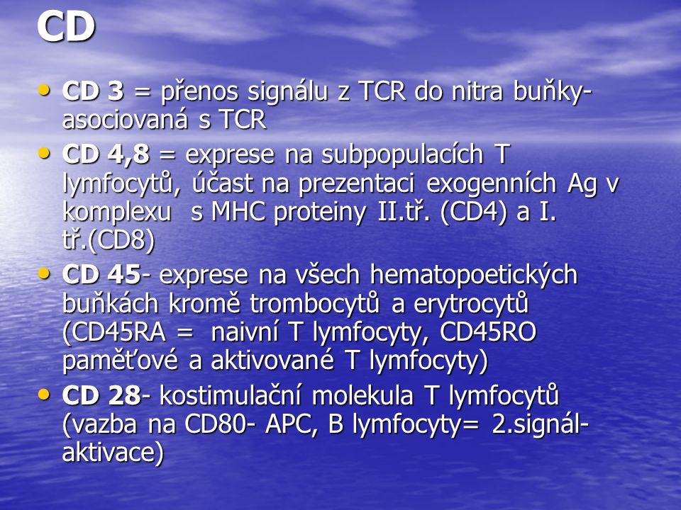 CD CD 3 = přenos signálu z TCR do nitra buňky- asociovaná s TCR