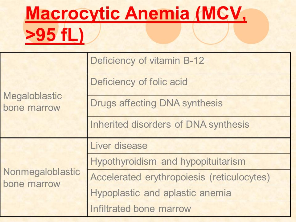 Macrocytic Anemia (MCV, >95 fL)