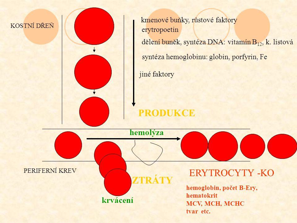 kmenové buňky, růstové faktory erytropoetin