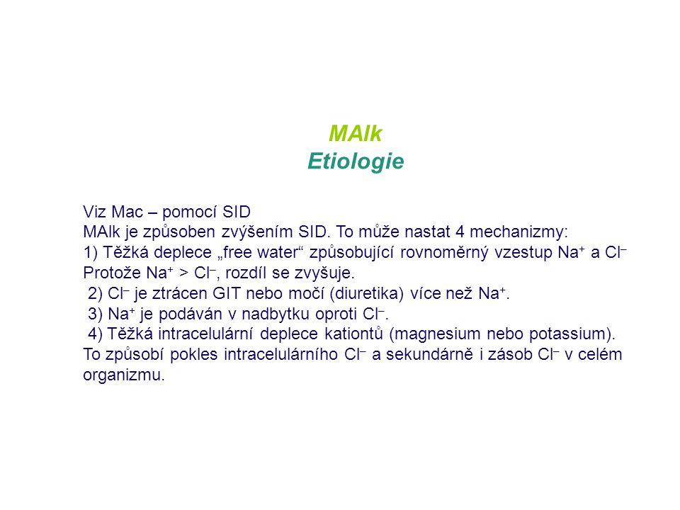 MAlk Etiologie Viz Mac – pomocí SID