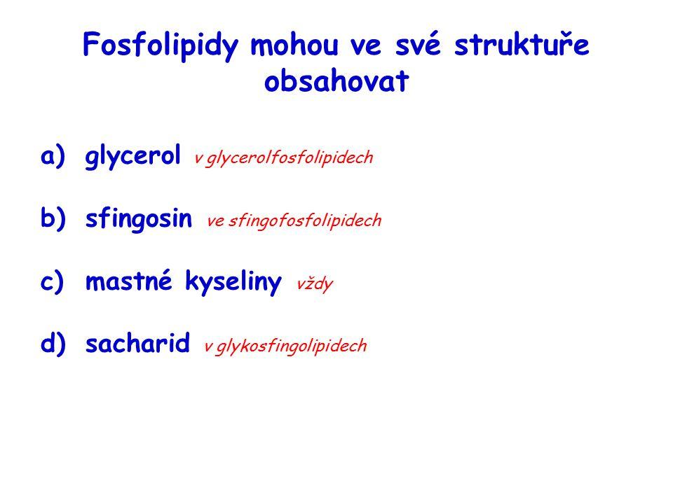 Fosfolipidy mohou ve své struktuře obsahovat