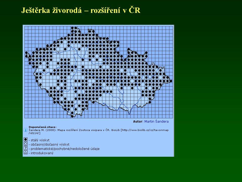 Ještěrka živorodá – rozšíření v ČR
