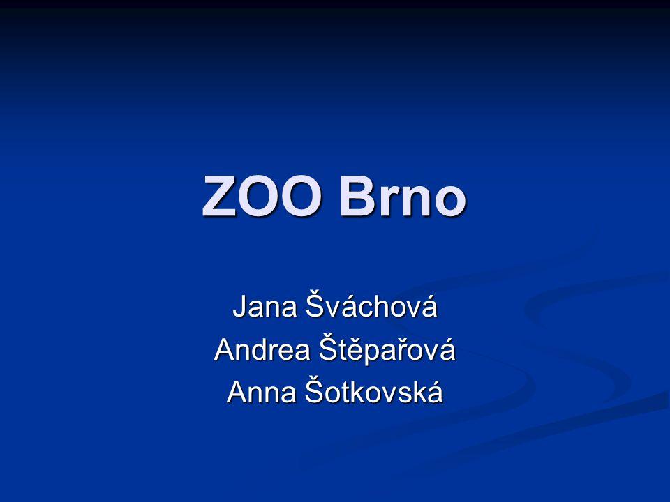 Jana Šváchová Andrea Štěpařová Anna Šotkovská