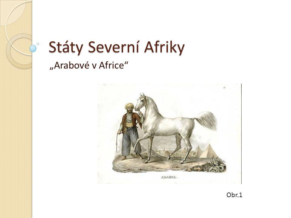 """Státy Severní Afriky """"Arabové v Africe Obr.1"""