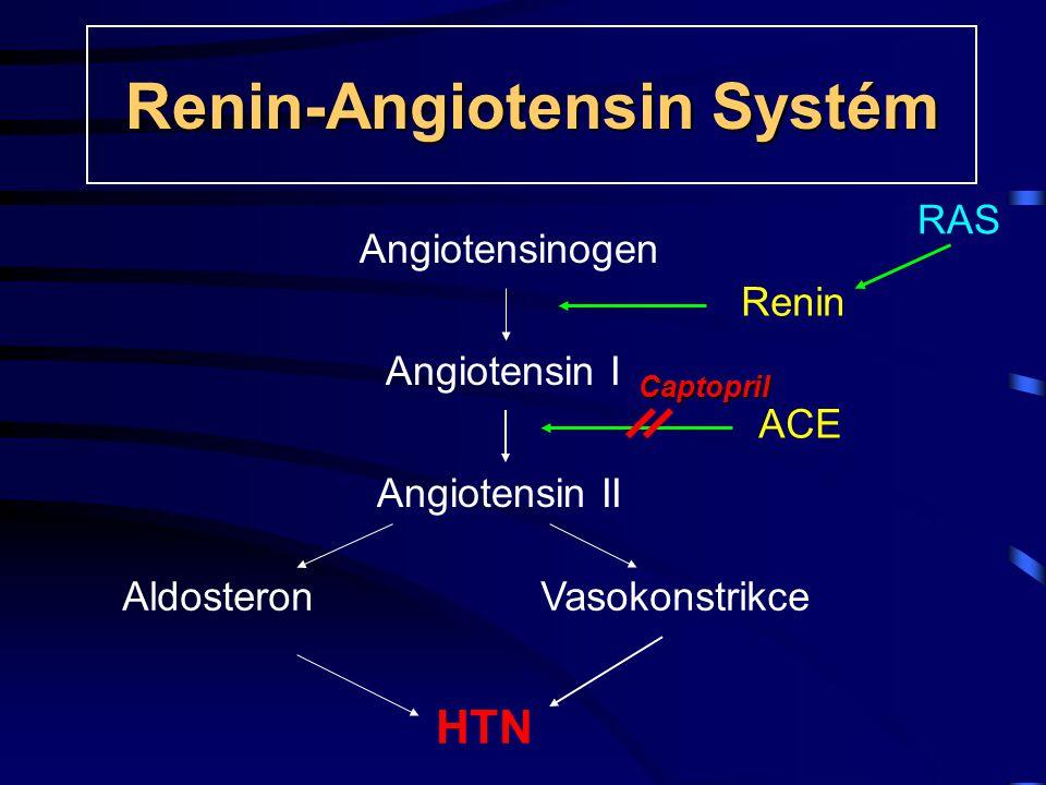 Renin-Angiotensin Systém