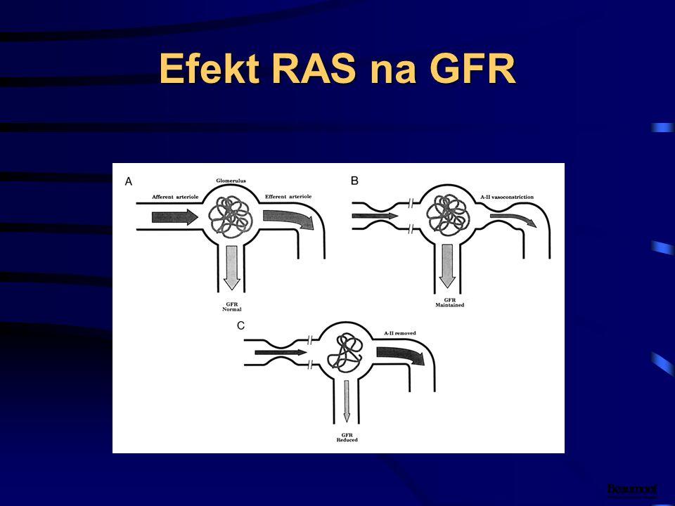 Efekt RAS na GFR