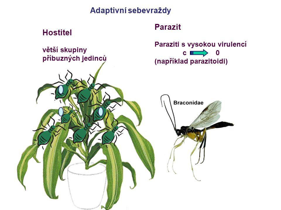 Adaptivní sebevraždy Parazit Hostitel Paraziti s vysokou virulencí c 0