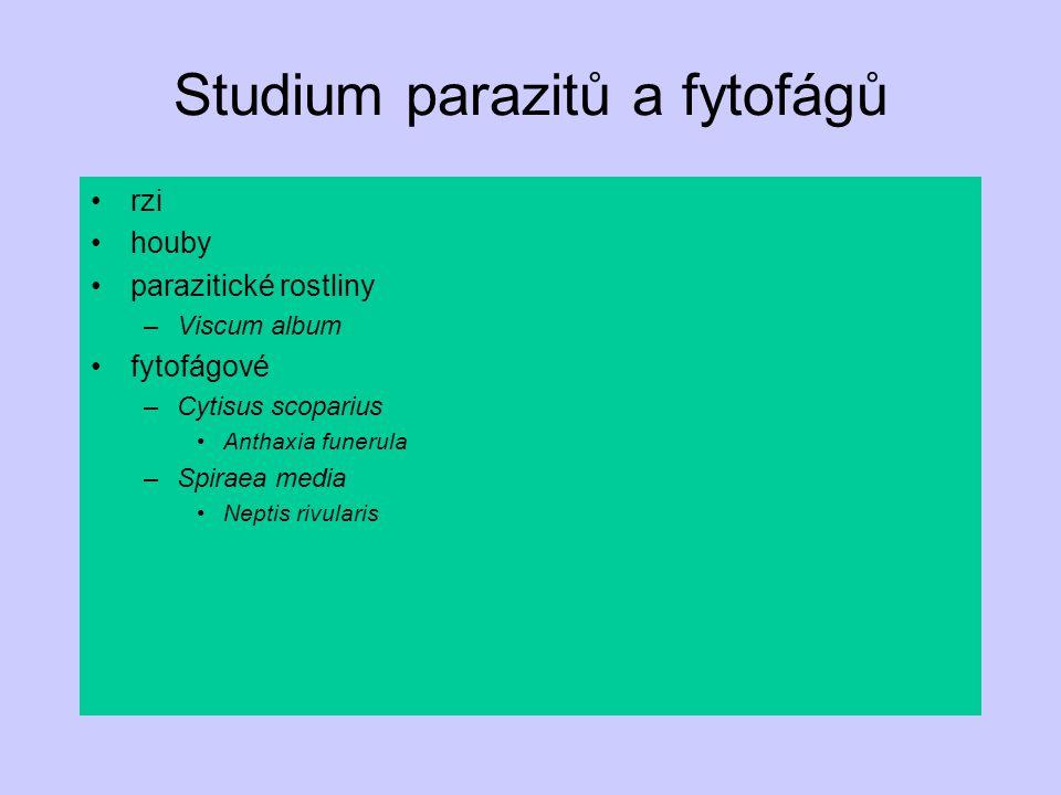 Studium parazitů a fytofágů