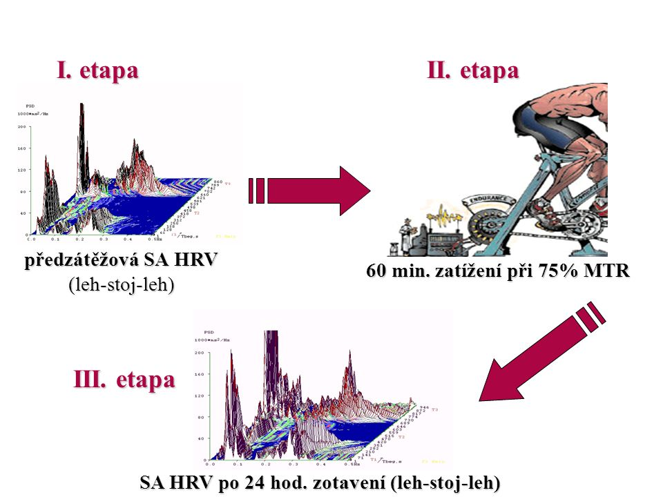 I. etapa II. etapa III. etapa předzátěžová SA HRV (leh-stoj-leh)