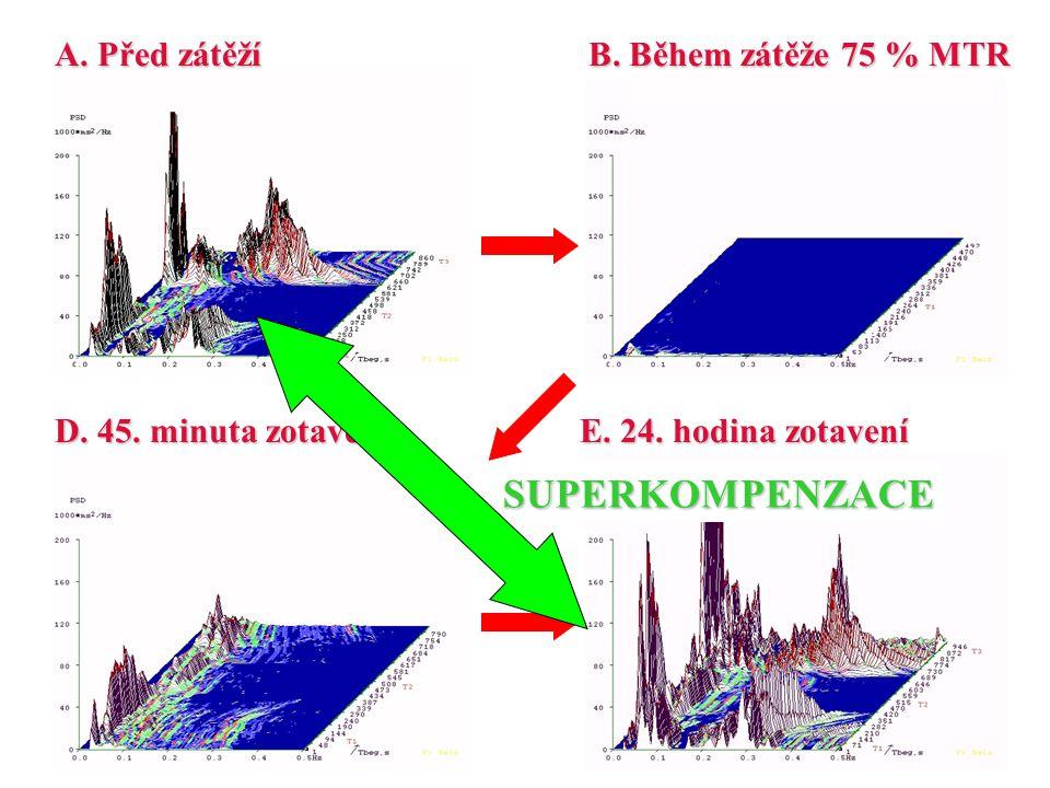 SUPERKOMPENZACE A. Před zátěží B. Během zátěže 75 % MTR