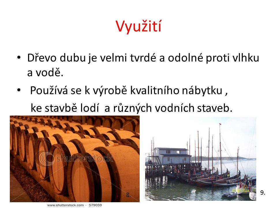 Využití Dřevo dubu je velmi tvrdé a odolné proti vlhku a vodě.
