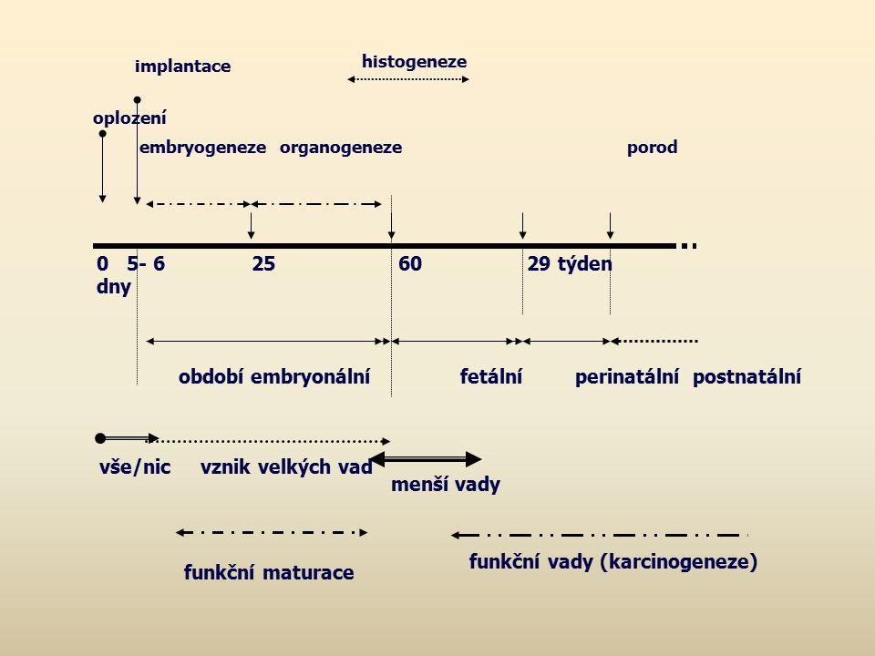 funkční maturace implantace. histogeneze. oplození. embryogeneze organogeneze porod.
