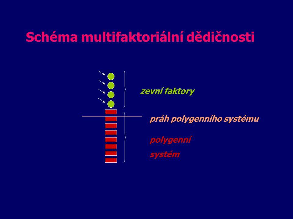 Schéma multifaktoriální dědičnosti