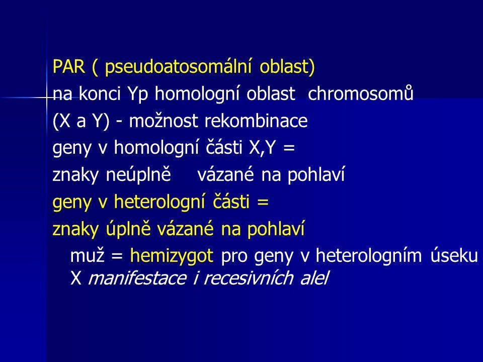PAR ( pseudoatosomální oblast)