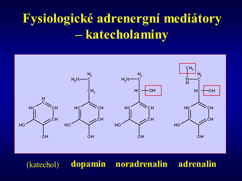 Fysiologické adrenergní mediátory – katecholaminy
