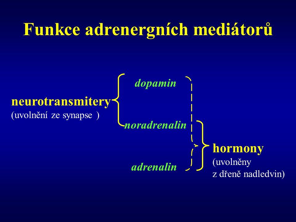 Funkce adrenergních mediátorů