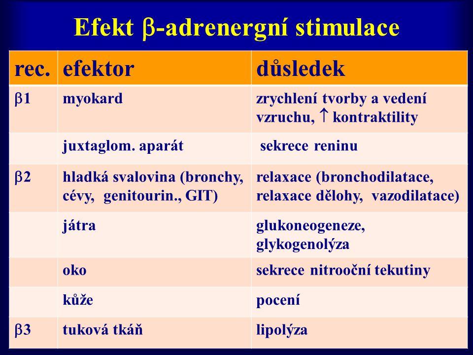 Efekt -adrenergní stimulace