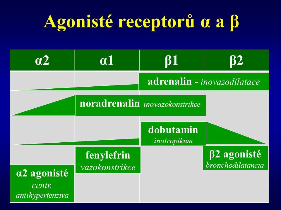 Agonisté receptorů α a β
