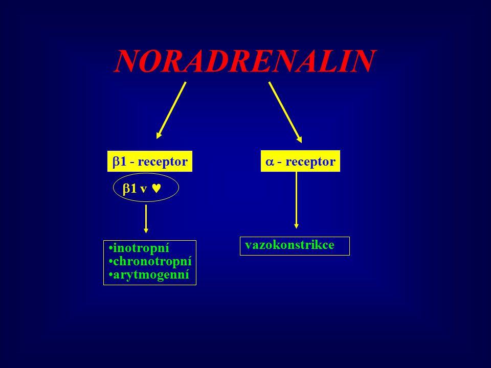 NORADRENALIN 1 - receptor  - receptor 1 v  vazokonstrikce