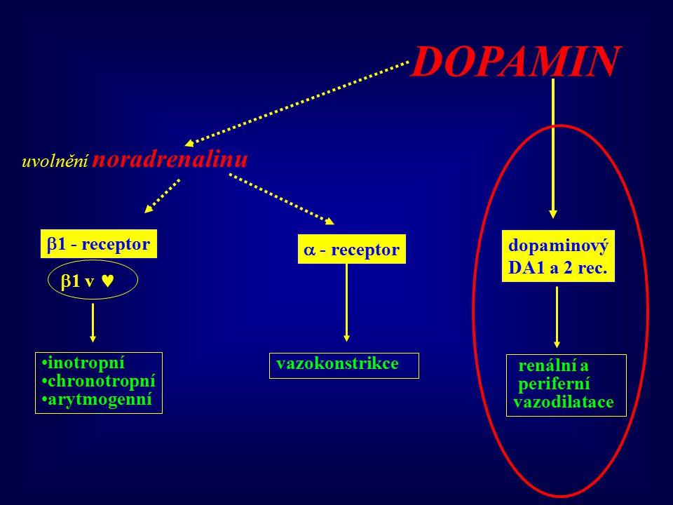 DOPAMIN uvolnění noradrenalinu 1 - receptor dopaminový  - receptor