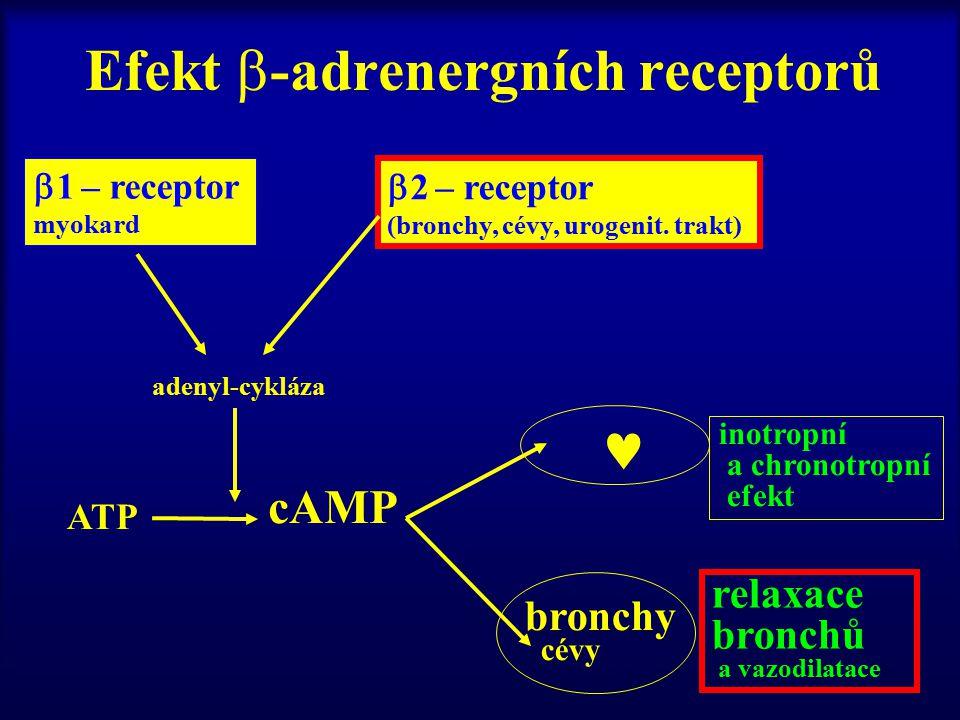 Efekt -adrenergních receptorů