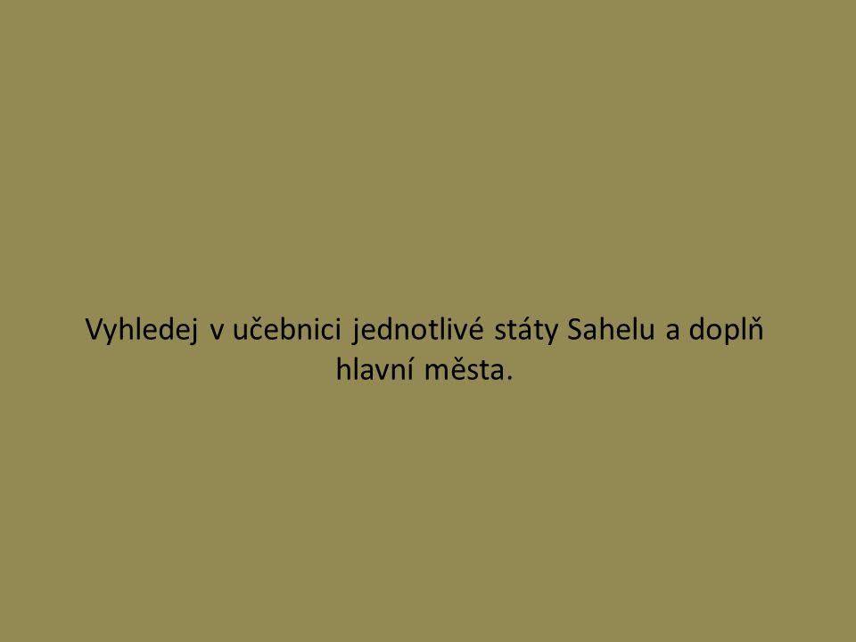 Vyhledej v učebnici jednotlivé státy Sahelu a doplň hlavní města.