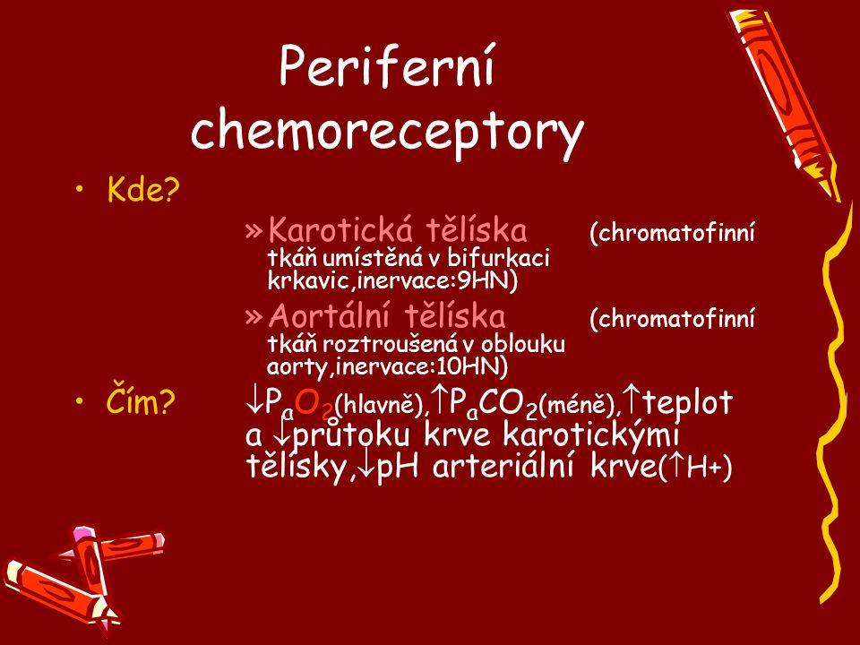 Periferní chemoreceptory