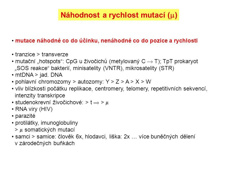 Náhodnost a rychlost mutací ()