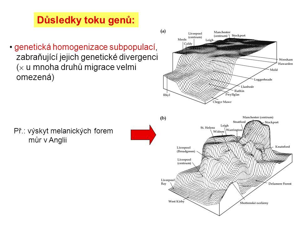 Důsledky toku genů: genetická homogenizace subpopulací, zabraňující jejich genetické divergenci ( u mnoha druhů migrace velmi omezená)