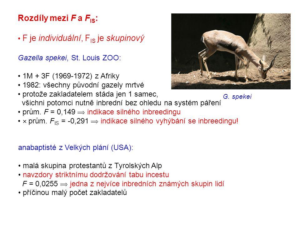 Rozdíly mezi F a FIS: F je individuální, FIS je skupinový