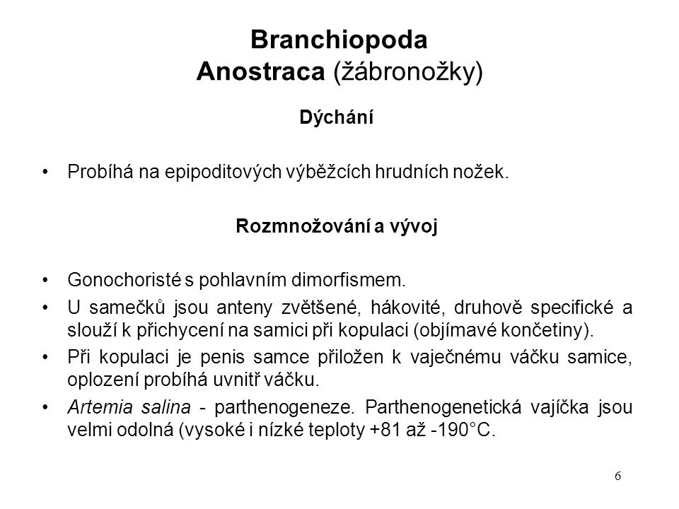 Anostraca (žábronožky)