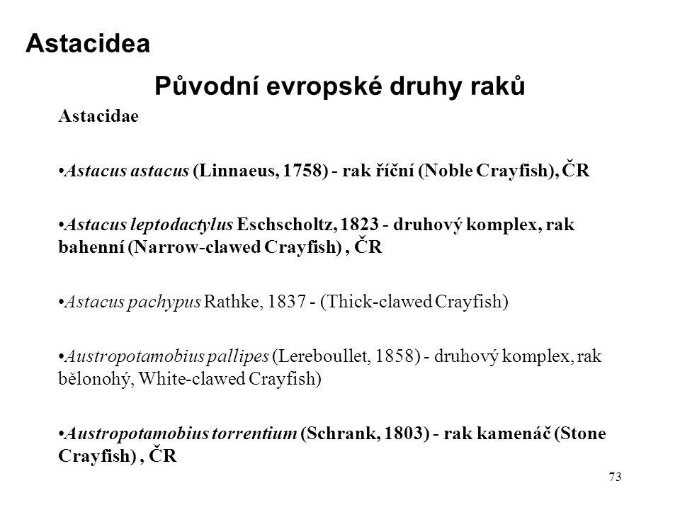 Původní evropské druhy raků
