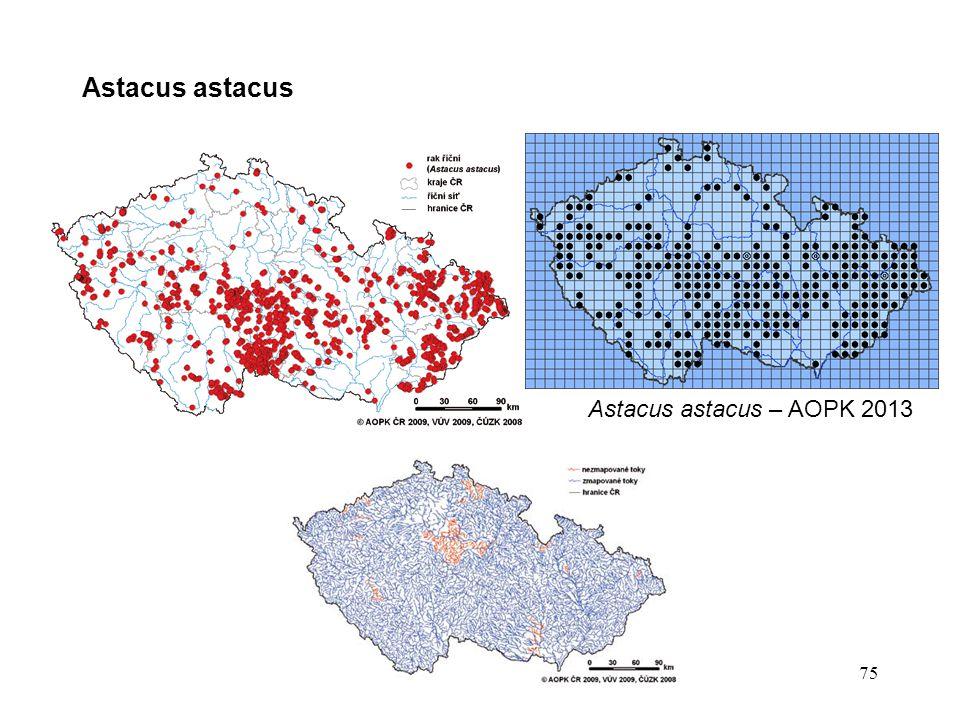 Astacus astacus Astacus astacus – AOPK 2013