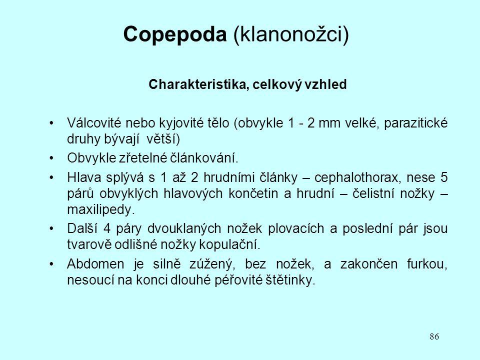 Copepoda (klanonožci)
