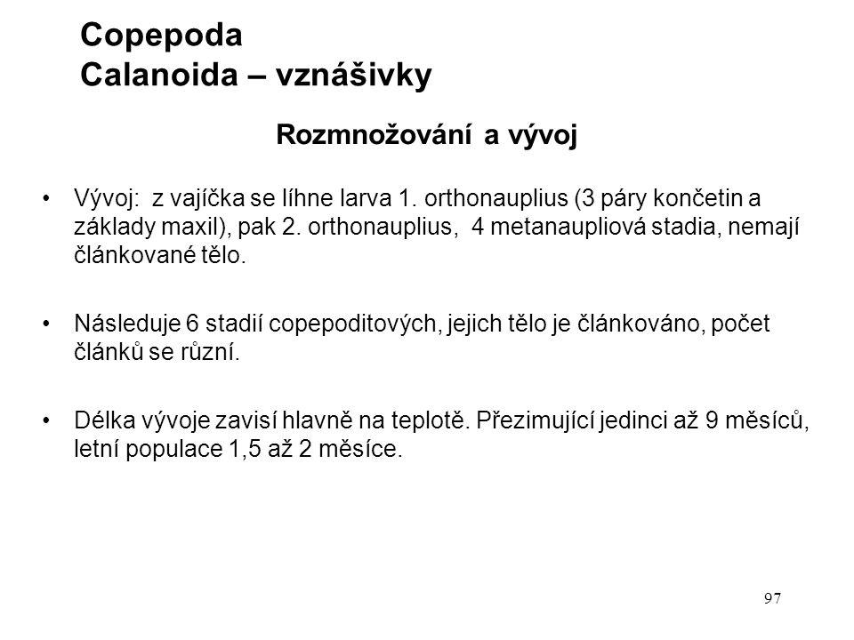 Copepoda Calanoida – vznášivky