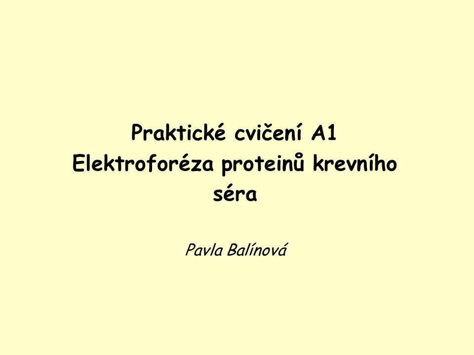 Elektroforéza proteinů krevního