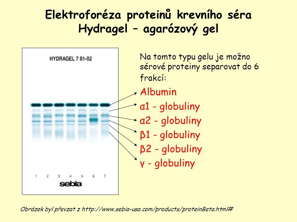 Elektroforéza proteinů krevního séra Hydragel – agarózový gel