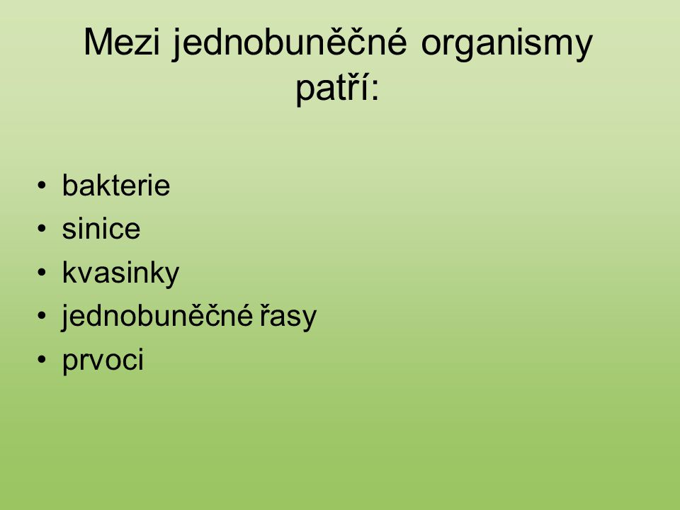 Mezi jednobuněčné organismy patří: