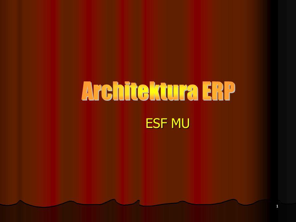 Architektura ERP ESF MU